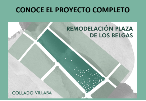 proyecto belgas